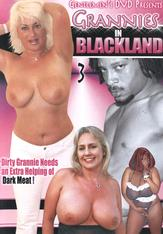 Grannies In Blackland #03