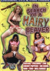 In Search of A Hairy Beaver